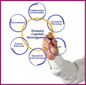 Impact-Executive-Solutions-Human-Resources-services1